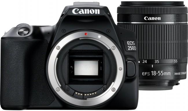 Canon EOS 250D + obiektyw 18-55mm IS STM + 50/1.8 STM - zdjęcie główne
