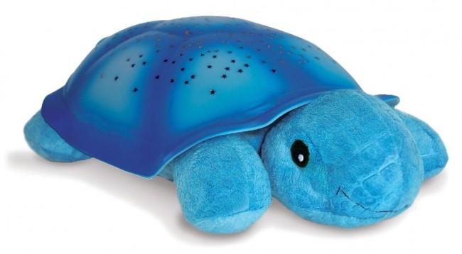 Cloud B Żółw Niebieski - zdjęcie główne