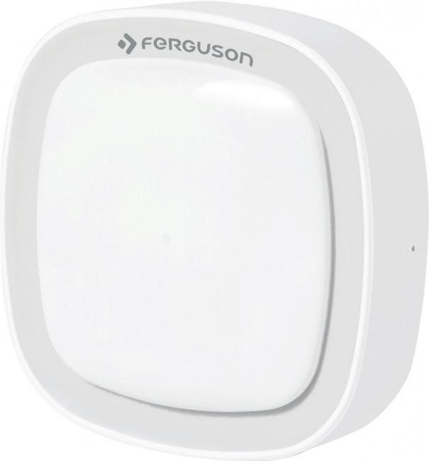 Ferguson Motion Sensor FS1MS - zdjęcie główne