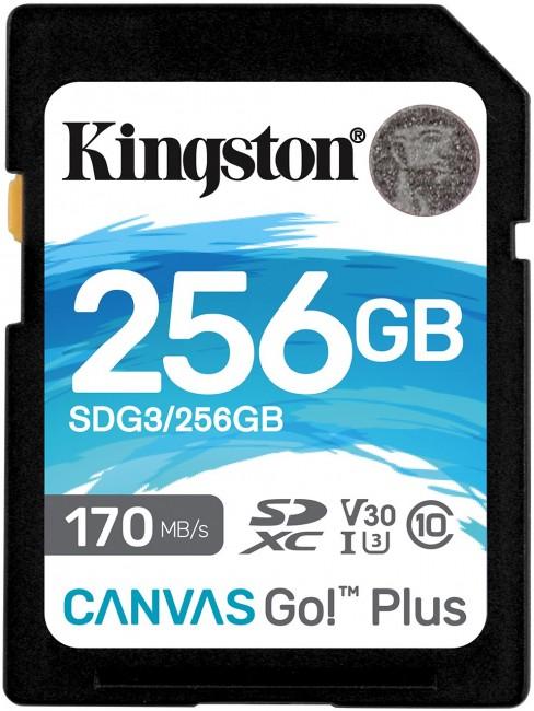 Kingston SDXC Canvas Go Plus 256GB 170R C10 UHS-I U3 V30 - zdjęcie główne
